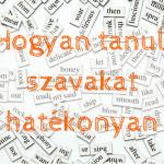 Nyelvtanulás: hogyan tanulj szavakat hatékonyan