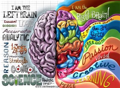 az a csodálatos emberi agy